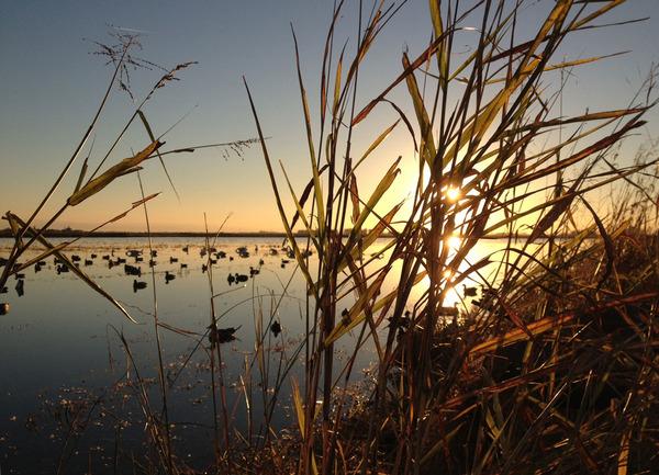 hunting sunrise 3